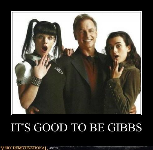 gibbs hilarious Sexy Ladies wtf - 5939842304
