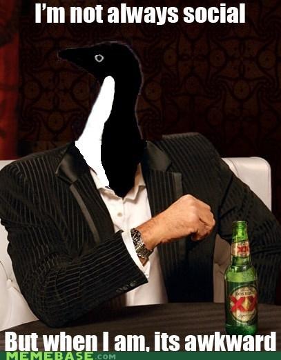 Meme Overload socially awkward penguin the most interesting man in the world - 5940175872