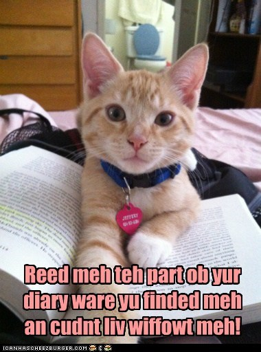 cat,diary,do want,found,needed,nostalgia,part,read,recalling,remembering,story,where