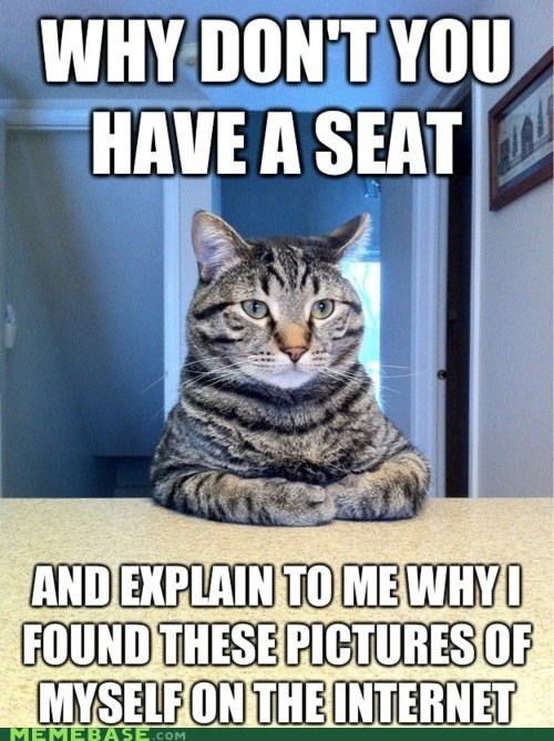 cat Chris Hansen lolcats Memes pictures seat - 5940317440