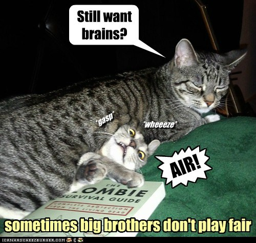 Still want brains? { AIR! *wheeeze* *gasp* sometimes big brothers don't play fair