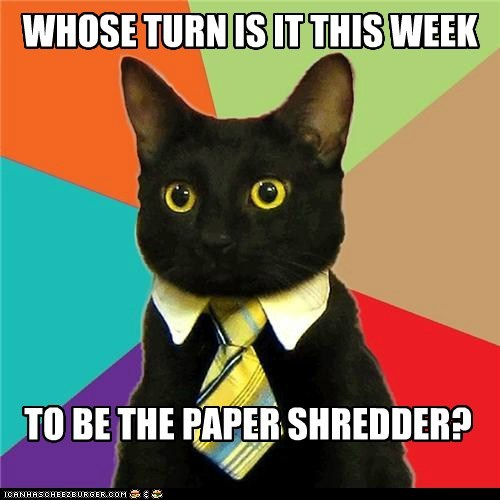 WHOSE TURN IS IT THIS WEEK TO BE THE PAPER SHREDDER?