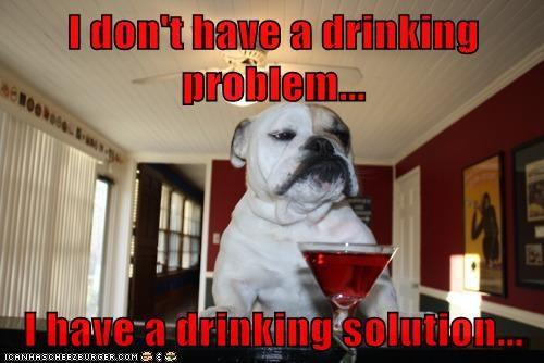 bulldog dogs funny - 5942592768