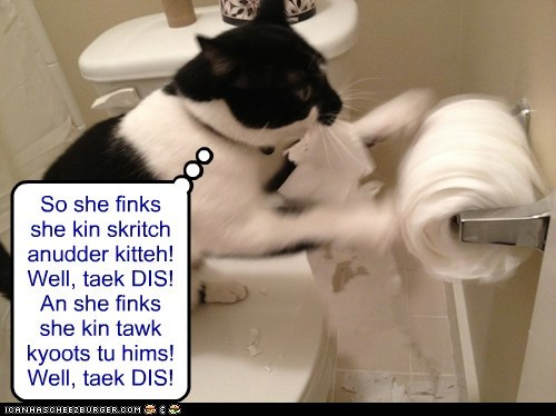 So she finks she kin skritch anudder kitteh! Well, taek DIS! An she finks she kin tawk kyoots tu hims! Well, taek DIS!