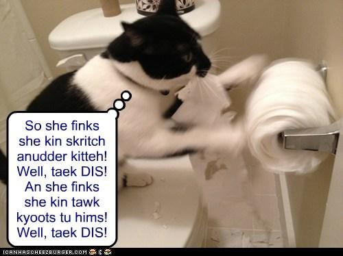 jealous mess revenge shredding toilet paper - 5943181056