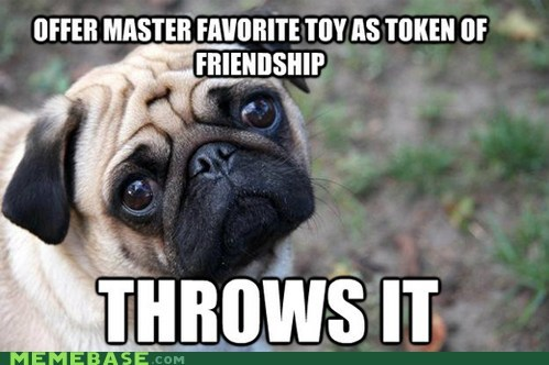 dogs fetch First World Problems throw toy - 5943206912