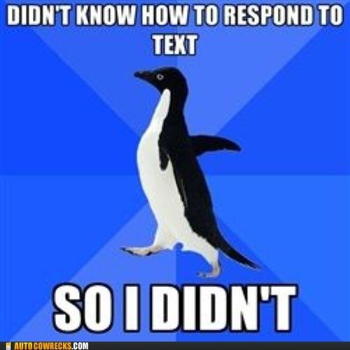Awkward meme shy socially awkward penguin - 5943395328
