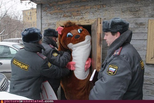 arrest nuts police russia theft wtf