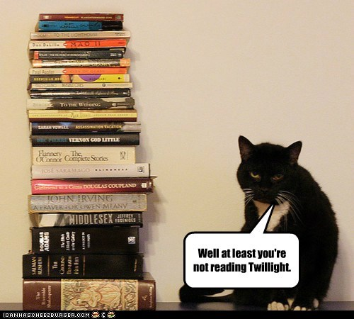 at least,books,cat,Cats,Hall of Fame,literature,lolcat,read,reading,twilight