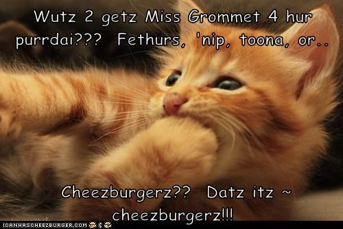 Cheezburger Image 5943528960