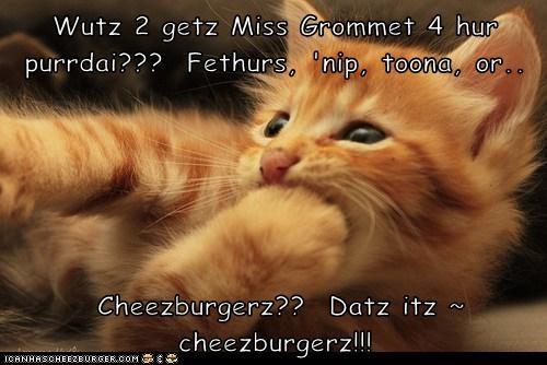 Cheezburger Image 5943528960