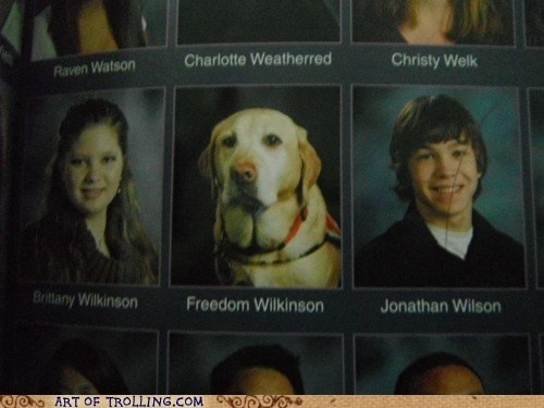 dogs wtf yearbook - 5944215040