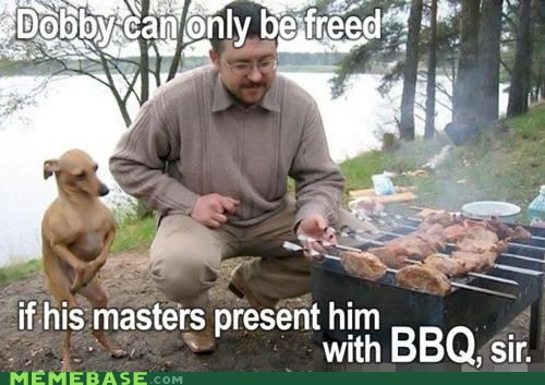 bbq Dobby doggy free Harry Potter Memes - 5944344832