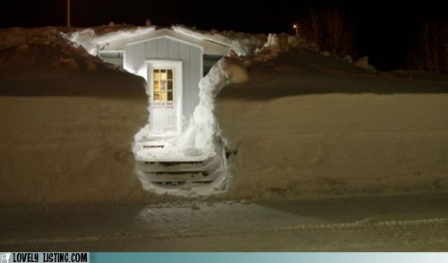 dig door path snow snowbank - 5944396032