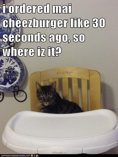 Cheezburger Image 5944549120
