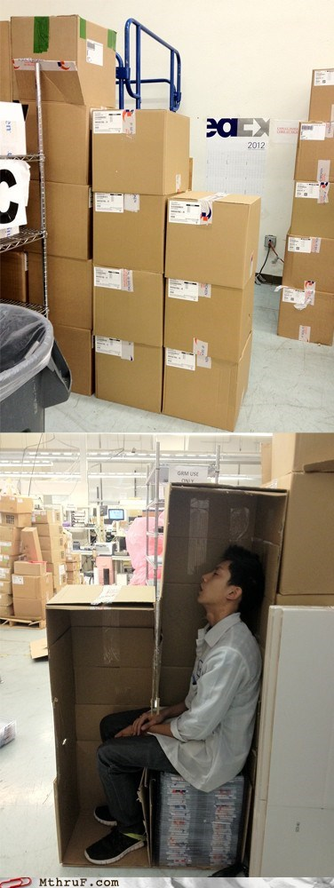 boxes,clever,fed ex,fedex,hiding place,sleep,uncomfortable
