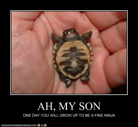 AH, MY SON ONE DAY YOU WILL GROW UP TO BE A FINE NINJA
