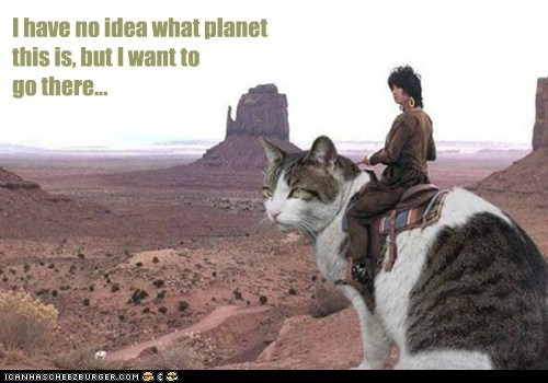 best of the week cat do want giant go adventure Hall of Fame no idea oversized planet saddle what - 5945576704