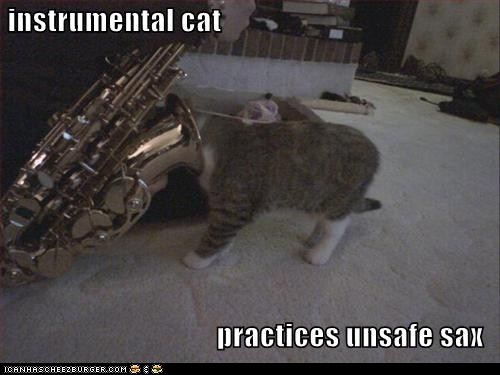 cat,classics,instrumental,pun,sax,similar sounding,unsafe