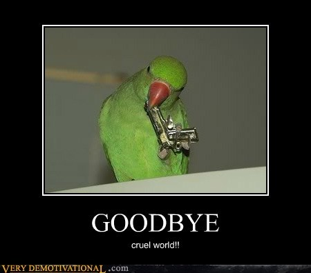 cruel world,goodbye,hilarious,parrot