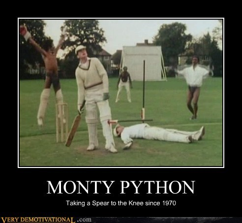 cricket hilarious knee monty python spear wtf - 5946617344