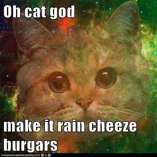 Cheezburger Image 5946906624