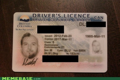 college humor drivers licence Memes - 5948210688