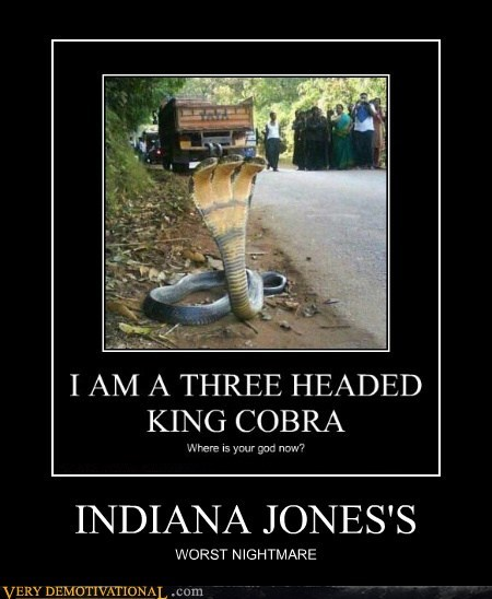 cobra,hilarious,Indiana Jones,worst nightmare,wtf