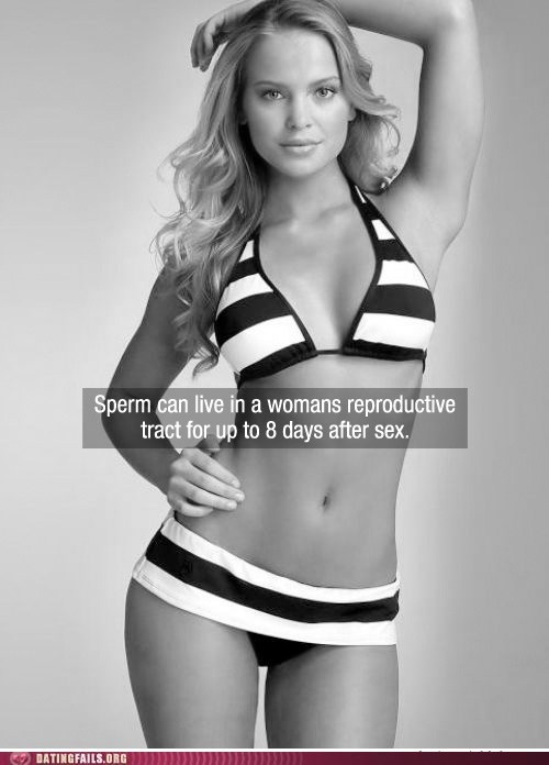now you know sexytime facts women and facts - 5949132032