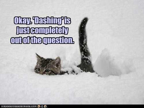 dashing deep excited running snow song winter