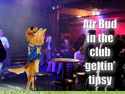 air bud,everybody,literalism,lyric,similar sounding,slurring,song,speech,tipsy