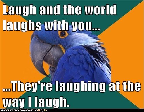 birds,laugh,laughing,Memes,paranoid,Paranoid Parrot,parrots,sayings