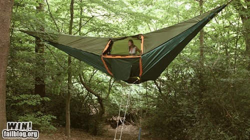 camping design Forest tent woods - 5949728512