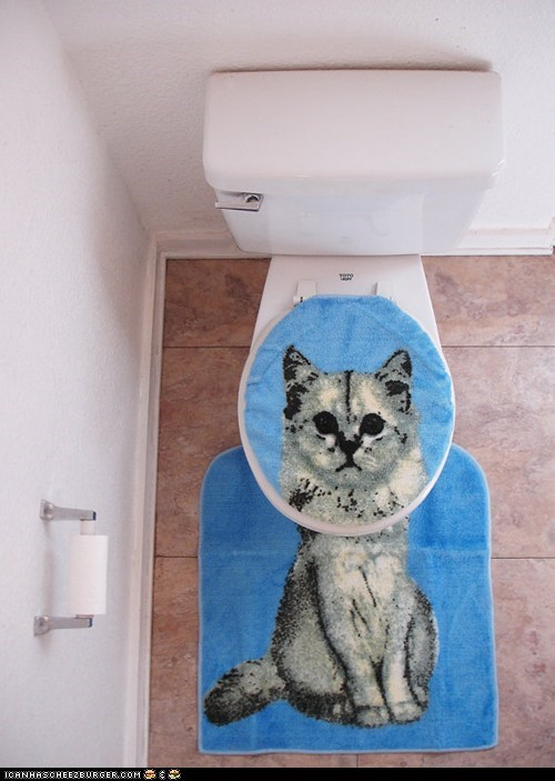 art bathroom cat litter box lolwut portrait toilet weird - 5950276864