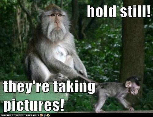 distraction hold still kids monkeys taking pictures - 5950586880