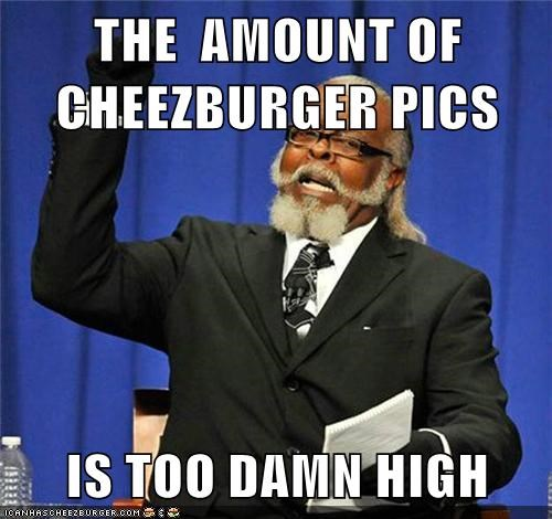 THE  AMOUNT OF CHEEZBURGER PICS   IS TOO DAMN HIGH