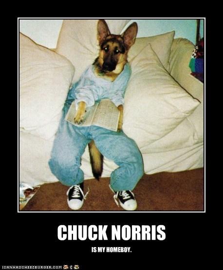 CHUCK NORRIS IS MY HOMEBOY.