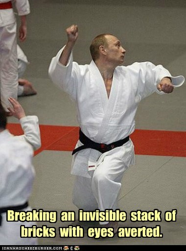 karate,political pictures,Vladimir Putin,vladurday