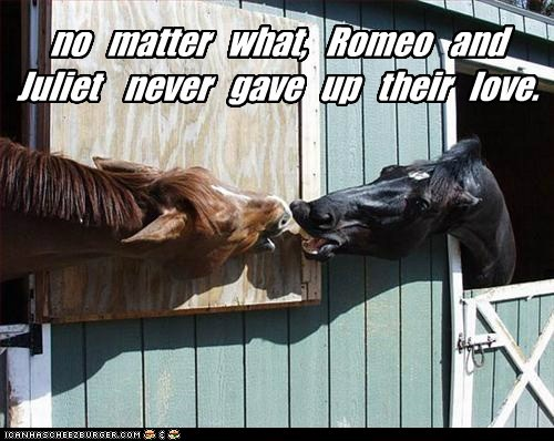 no matter what, Romeo and Juliet never gave up their love.