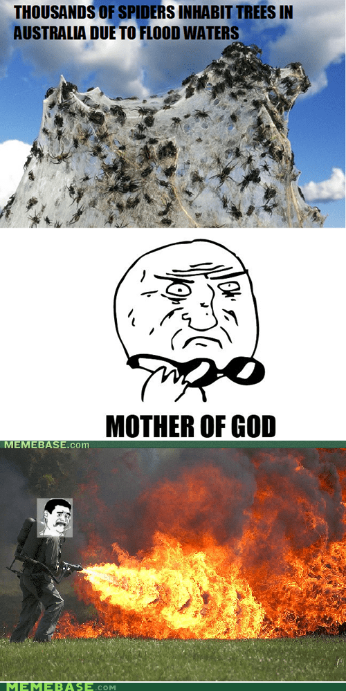 fire,mother of god,Rage Comics,spiders
