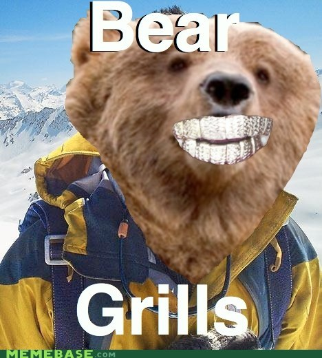 bear,bear grylls,discovery channel,fired,grills,replacement
