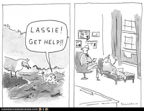 dogs get help lassie misinterpretation psychiatric help psychiatrist request therapy - 5953522688