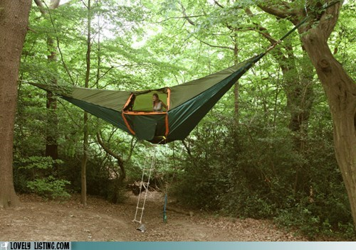 camping,hammock,suspended,tent,trees