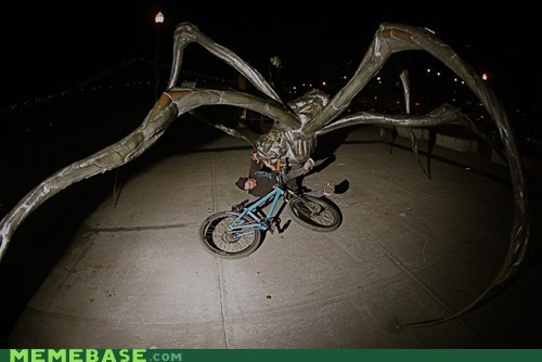 bicycle,crash,giant,spider,wtf