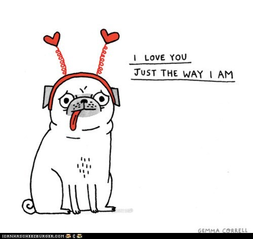 comic,contradiction,derp,dogs,gemma correll,lolwut,love