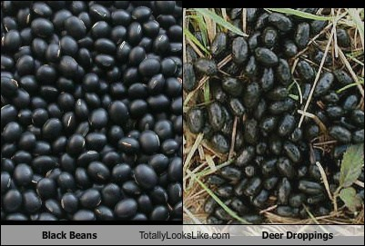 black beans,deer droppings,food,funny,TLL