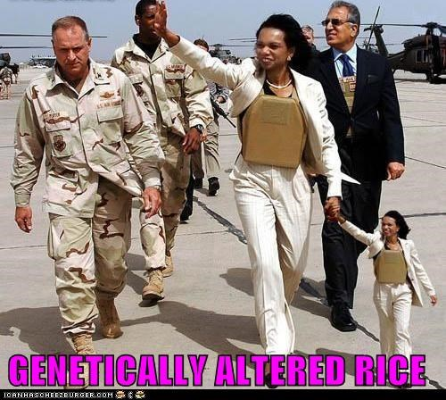 Condoleezza Rice political pictures - 5955821312