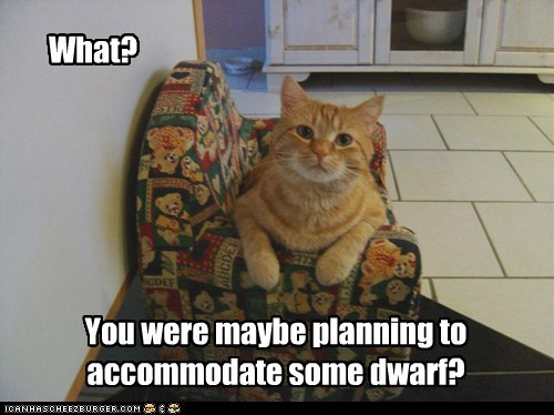 accommodate,chair,do want,dwarf,mine,ownership,question,tabby,tiny
