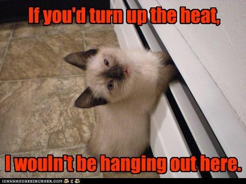 cold freezing fridge Heat refrigerator - 5959677440