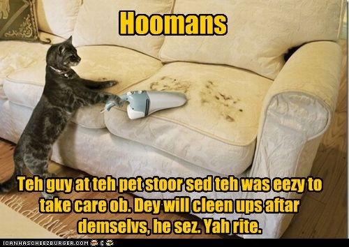 annoy clean couch fur human pet store role reversal vacuum - 5959743744